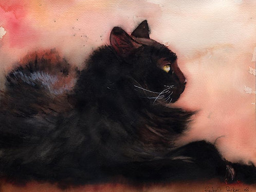 """Sadie Sunbathing"" Black Cat Giclée"