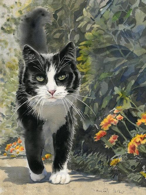 """Tuxedo Stroll"" Tuxedo Cat art Giclée"
