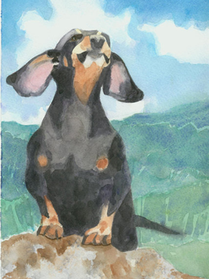 """Dachshund - The Sky is Falling!"" Giclée"