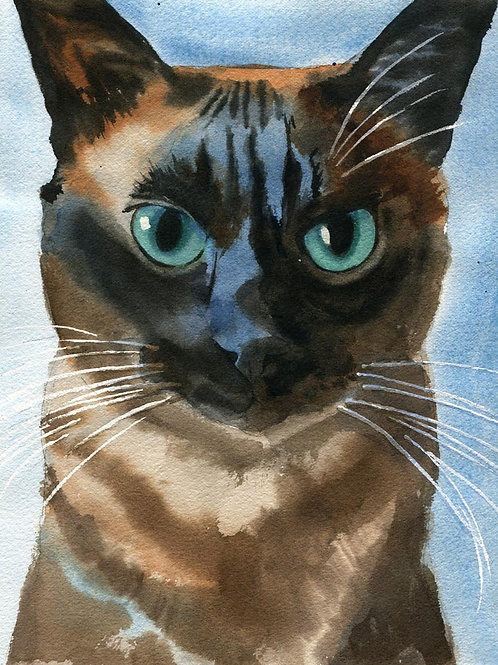 """Poppy"" Applehead Siamese Cat Giclée"
