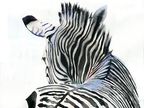 """""""Zebra Contours"""" Giclée"""
