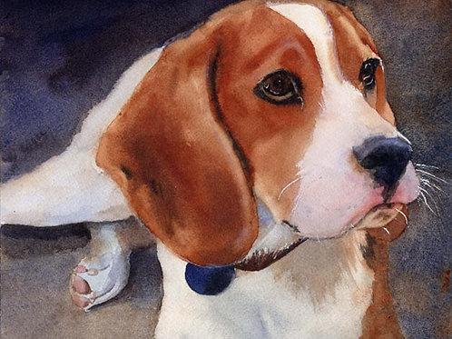 """""""Beagle Portrait"""" Giclée"""