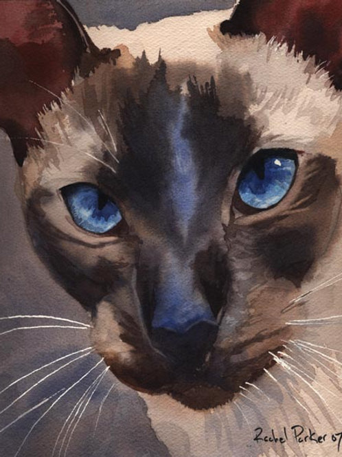 """Prince Charming"" Siamese Cat Giclée"