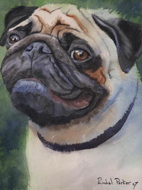 """Poised Pug"" Giclée"