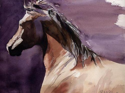 """Arabian Portrait"" Giclée"