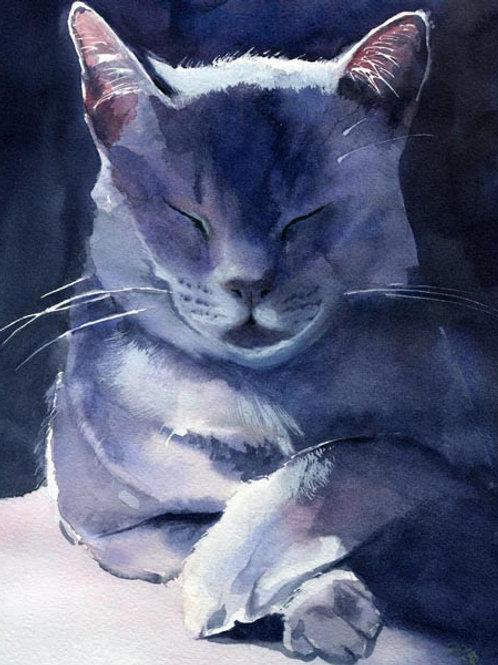 """""""Russian Blue Portrait"""" Giclée"""