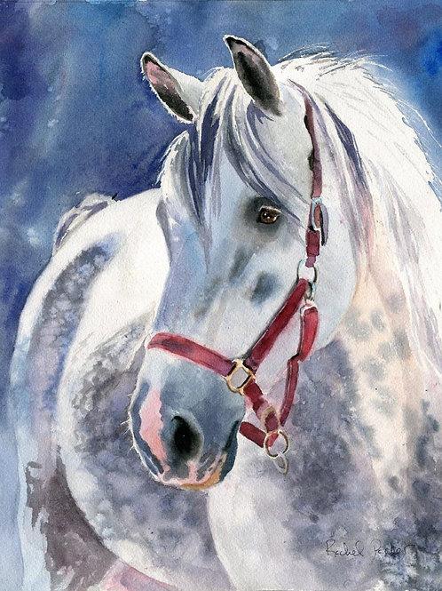 """Dapples in Red Halter"" 11x14"" Watercolor"