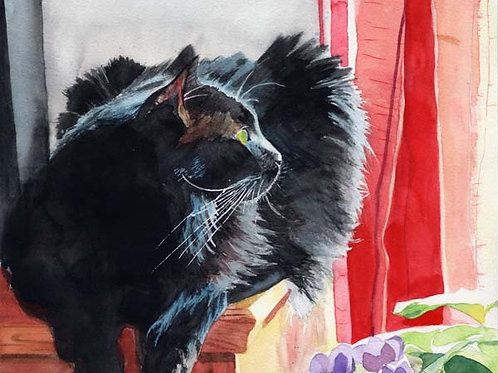 """""""Sadie with Red Curtains"""" Black Cat Giclée"""