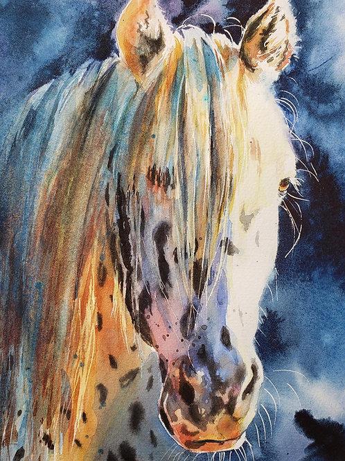 """Appy Lit"" Horse Giclée Art Print"
