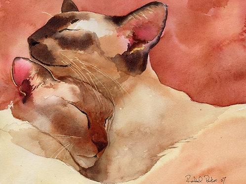 """Slumber"" Siamese Cat Giclée"