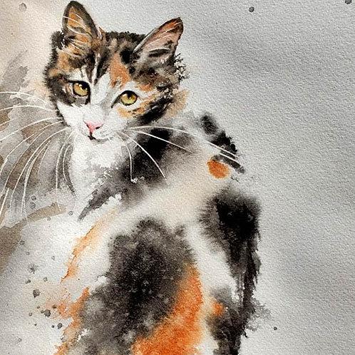 Wet on Wet Loose Calico Cat Watercolor Tutorial