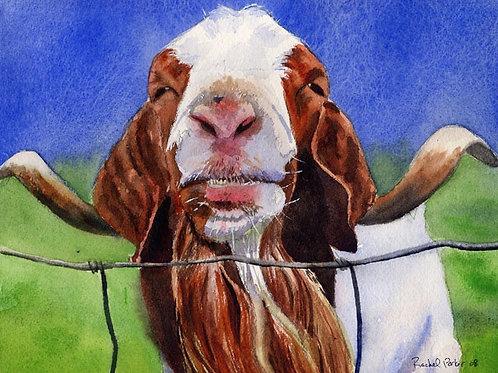 """""""Billy Goat Blues"""" Giclée"""