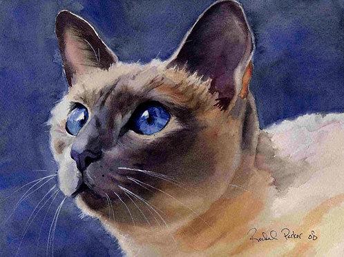 """""""Bella"""" Siamese Cat Giclée"""