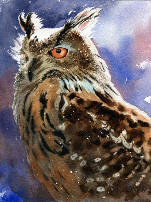 """Owl Portrait"" Giclée"