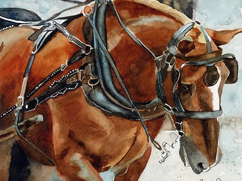 """Belgian in Charleston"" Draft Horse Giclée"