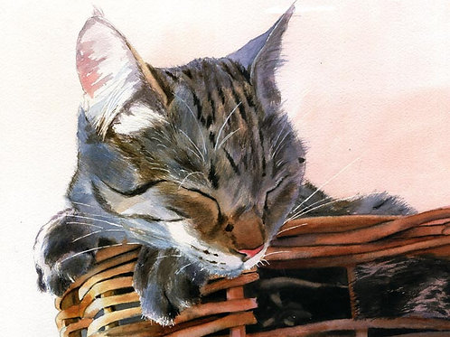 """""""Basket Case"""" Tabby Cat Giclée"""