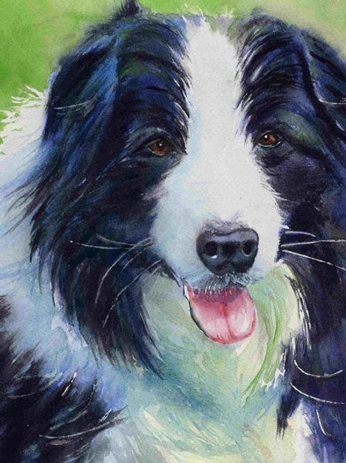 """Sheepdog"" 8 x 10"" Original Watercolor"