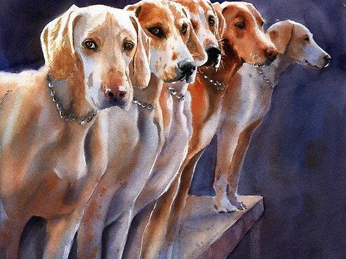 """Penn Marydel Foxhounds"" Giclée"