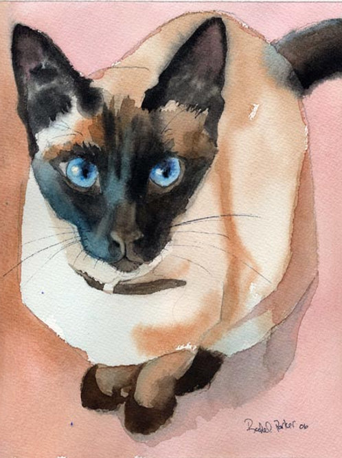 """I Want Up"" Siamese Cat Giclée"