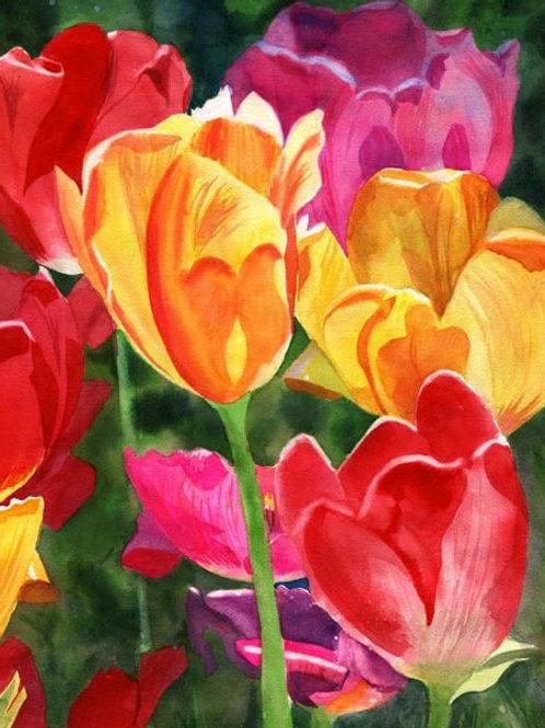 """""""Tulip Glow"""" Giclée"""