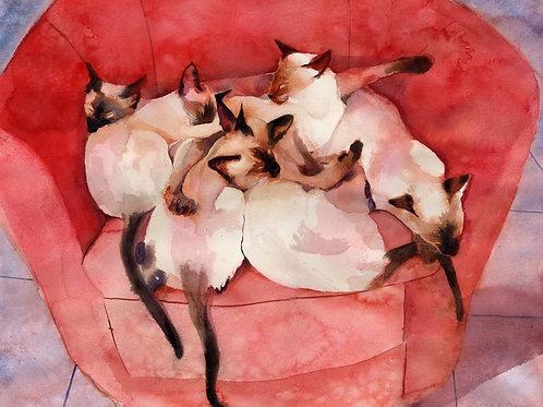 """""""Their Chair"""" Siamese Cat Giclée"""