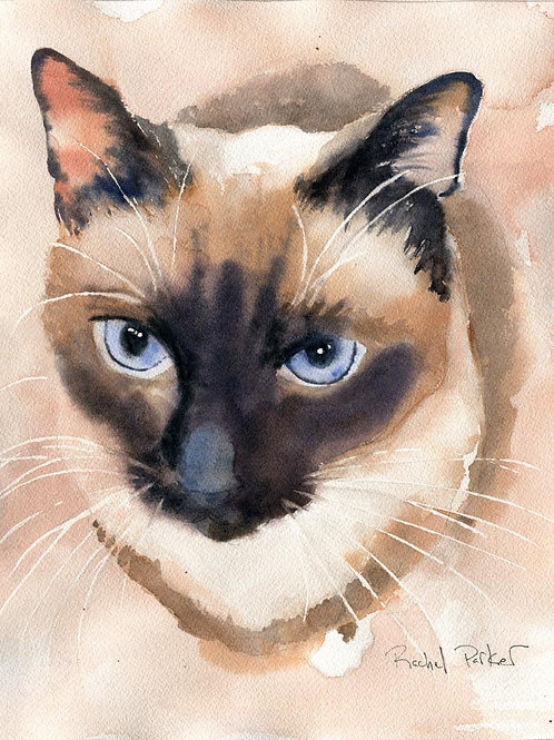 """Soft Shades"" Applehead Siamese Cat Giclée"