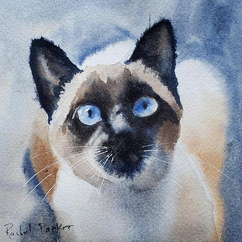 """Simply Siamese Cat Original  Watercolor 5x5"""""""