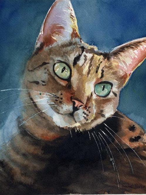 """Inky"" Tabby Cat Giclée"