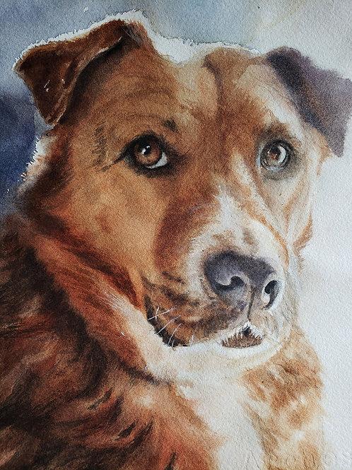 Tan Dog Watercolor Tutorial