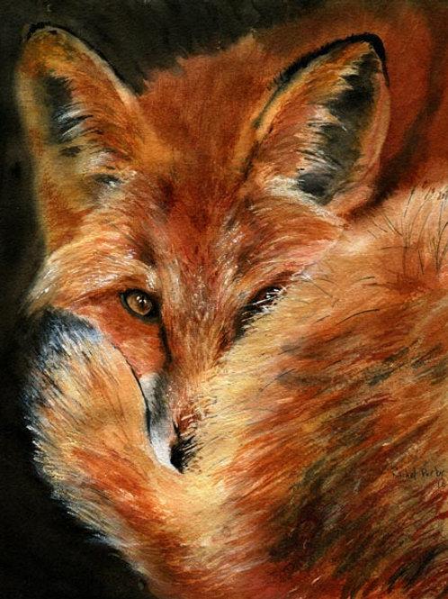 """Hiding Fox"" Giclée"