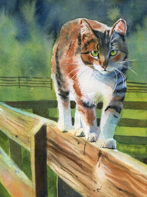 """""""On the Fence"""" Tabby Cat Giclée"""