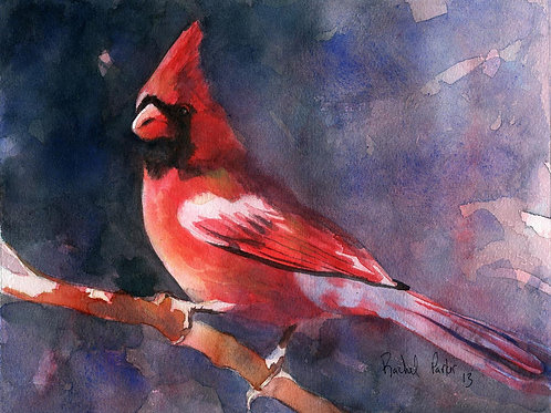 """Cardinal Evening"" Giclée"