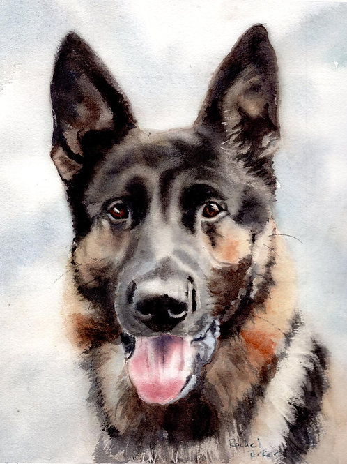 """German Shepherd Portrait"" Giclée Art Print"