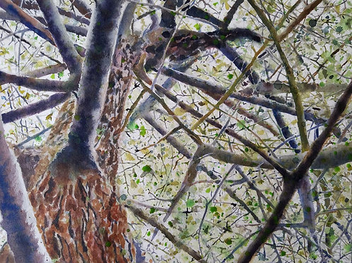 """Branch Manager"" Original Watercolor Painting"