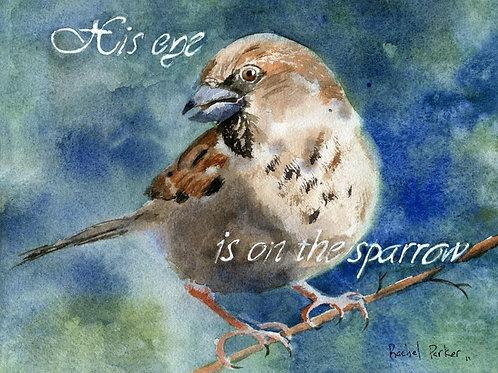 """""""Eye on the Sparrow"""" Giclée"""
