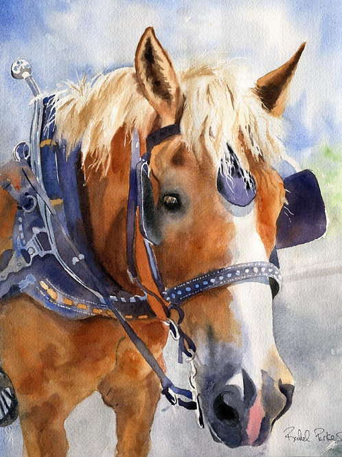 """Belgian in Charleston"" Draft Horse Giclée"