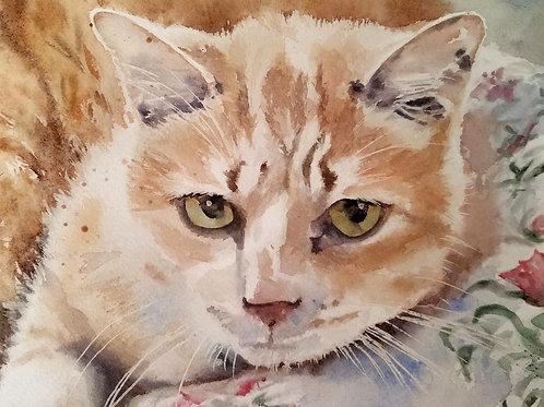 """""""My Domain"""" Tabby Cat art Giclée"""