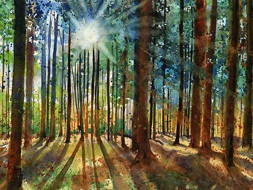 """""""Karin's Forest"""" Giclée"""