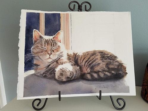 """""""Tabby Sun Spot"""" Cat art Print Giclée"""