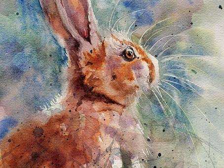 "Tutorial - ""Tolga's Bunny"""