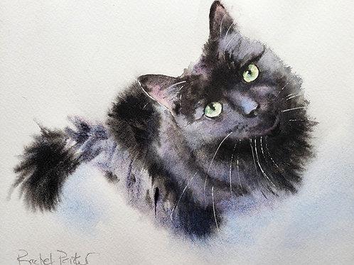 """Black Cat Original  Watercolor 8x10"""""""