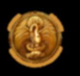 DSPN Logo_GOLDpng.png