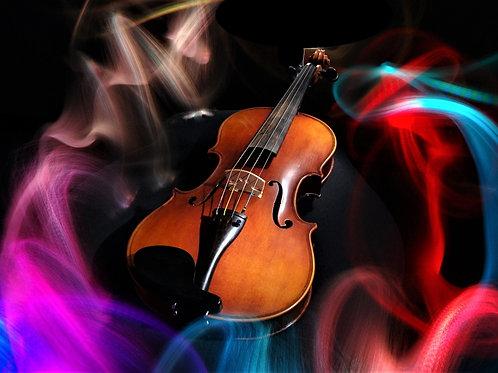 Sweet New Viola