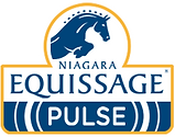equissage-logo256x201.png