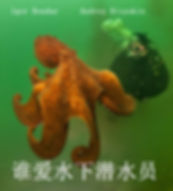 CHI. Cover Divers love.jpg