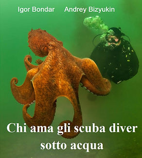 IT. Cover Diver love.jpg