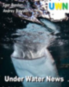 Under Water News.jpg