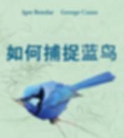 CHI. Cover Bluebird.jpg