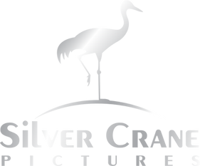 SILVER_CRANE_PICTURES.png