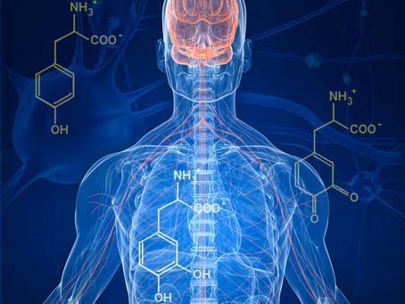 Fighting back against Parkinson's Disease